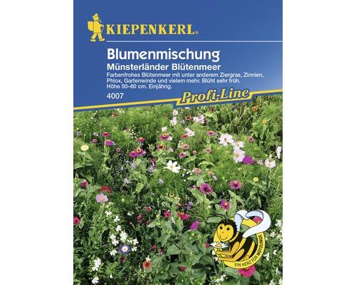 Mélange de fleurs «Münsterländer Blütenmeer» semences de fleurs Kiepenkerl