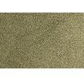 Teppichboden Velours Palmares olive 500 cm breit (Meterware)