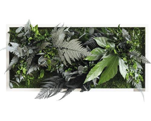 Tableau végétal Design jungle 57x27 cm