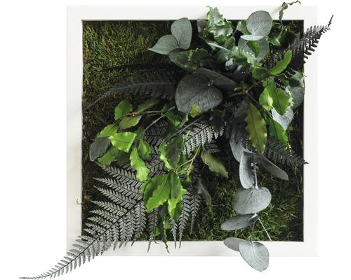 Tableau végétal Design jungle 22x22 cm