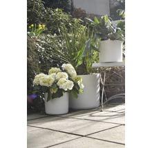 Pot de fleurs Soendgen Miami céramique Ø 13 H 11 cm blanc-thumb-5