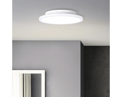 Panneau LED 12W 1560 lm 4000 K blanc neutre Ø 250 mm Buffi blanc