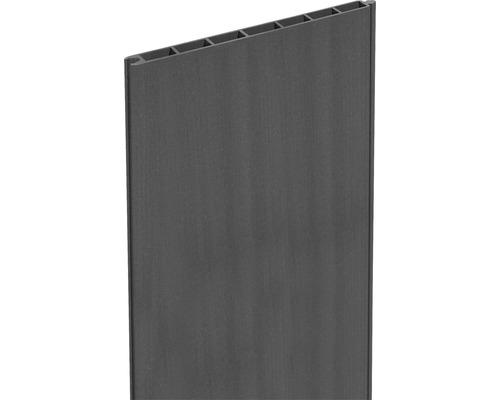 Profilé bois composite Flex Grande 180x25,3 cm, anthracite