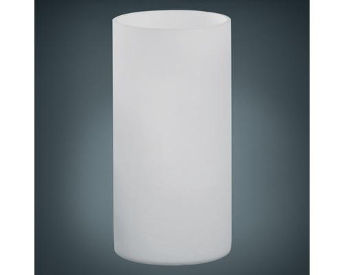 Lampe de table 1 ampoule hxØ 200x100 mm Geo opale mat