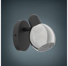 Spot patère acier/verre 1 ampoule hxL 105x65 mm Pollica noir/transparent-thumb-0