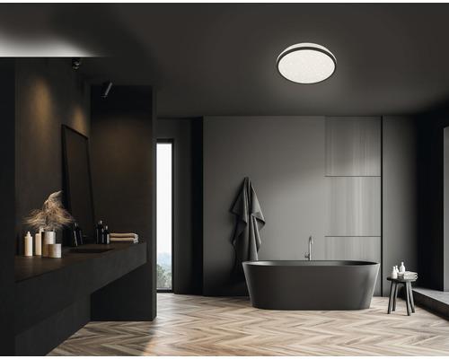 Plafonnier salle de bain LED IP44 12W 1200 lm 4000 K blanc neutre hxØ 70x280 mm Acotus noir