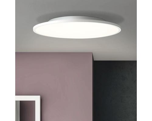 Panneau LED 30W 3000 lm 2700 K blanc chaud Ø 450 mm Buffi blanc