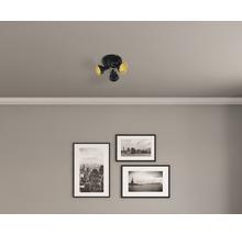 Spot de plafond FLAIR 3 ampoules rond Alrakis noir/mat/or Ø 210 mm-thumb-0