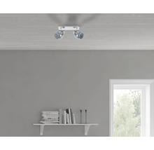 Spot de plafond FLAIR 2 ampoules fer/nickel/satiné verre fumé l 250 mm-thumb-0