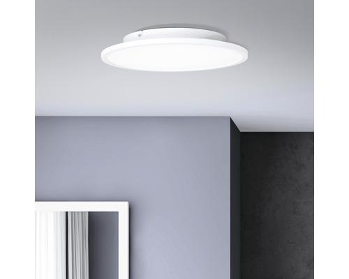Panneau LED 24W 3120 lm 4000 K blanc neutre Ø 350 mm Buffi blanc