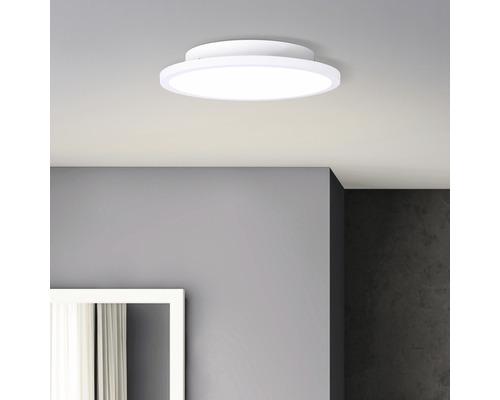 Panneau LED 12W 1200 lm 2700 K blanc chaud Ø 250 mm Buffi blanc