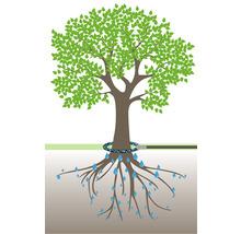 Kit d''irrigation pour arbre GEKA plus-thumb-1