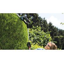 Manche télescopique Bosch Home and Garden ISIO à partir du modèle 2014-thumb-1