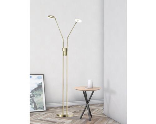 Lampadaire LED métal/ verre acrylique CCT + à intensité lumineuse variable 2x6W 2x800 lm 2700/3350/4000 K blanc chaud/ blanc neutre h 1,5 m Dent couleur laiton mat poli