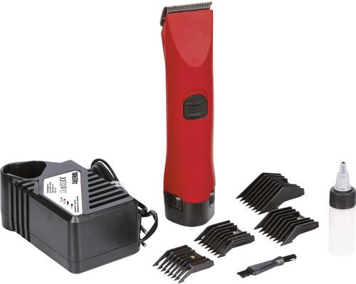 Tondeuse pour animaux professionnelle sans fil avec batterie de rechange, sans tête de rasoir