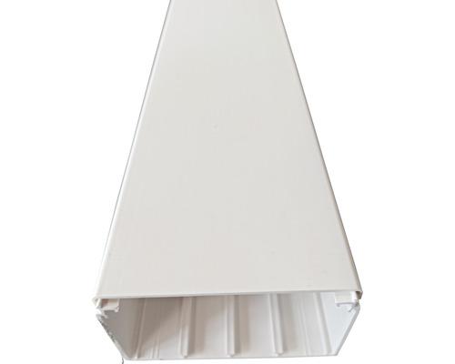 Conduite de câbles Hager LF Tehalit PVC 60x110 mm2,0 m blanc trafic