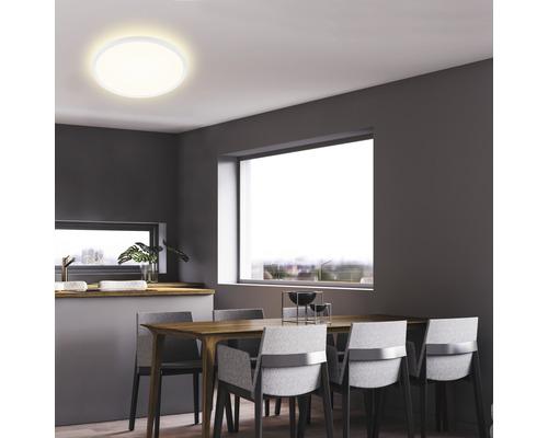 Panneau LED métal/plastique 22W3000 lm4000 K blanc neutre Backlight hxØ 29x420 mm Slim rond blanc