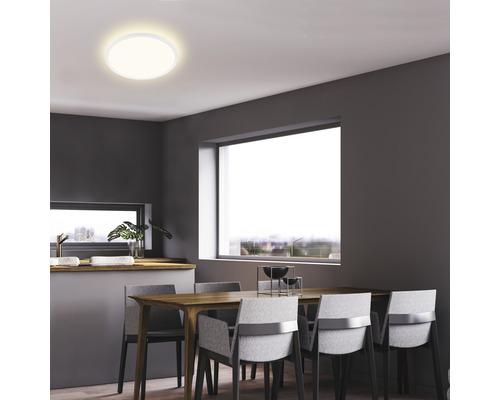 Panneau LED métal/plastique 18W2400 lm4000 K blanc neutre Backlight hxØ 28x293 mm Slim rond blanc