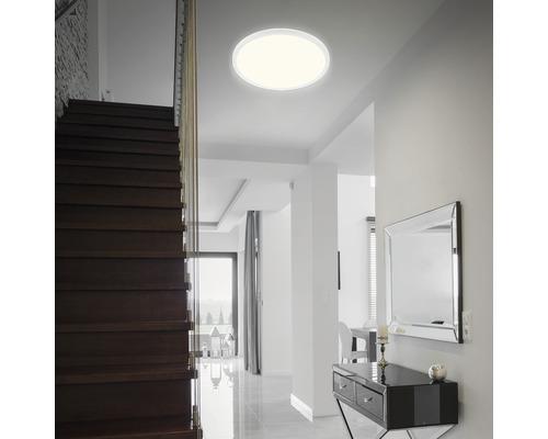 Panneau LED métal/plastique 30W3500 lm4000 K blanc neutre Backlight hxØ 30x480 mm Slim rond blanc