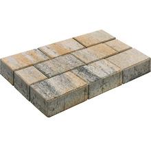 Pavé rectangulaire Luna calcaire coquillier 20 x 10 x 6 cm-thumb-0