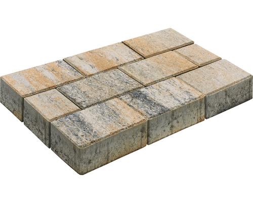 Pavé rectangulaire Luna calcaire coquillier 20 x 10 x 6 cm-0