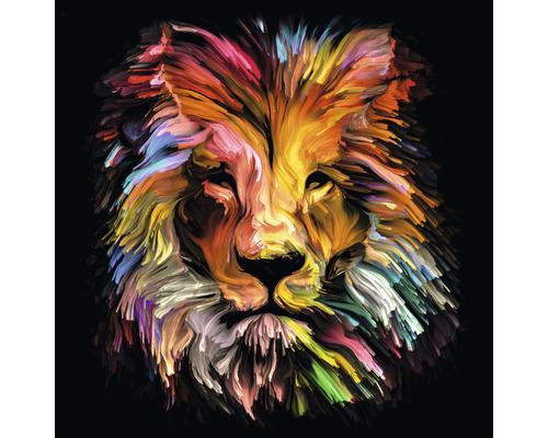 Tableau en verre Colorful Lion Head 80x80 cm