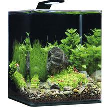 Aquarium DENNERLE Nano Cube Complete+ 20l - Style LED M avec éclairage LED, substrat, filtre, paroi arrière, thermomètre-thumb-1