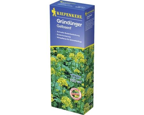Engrais vert moutarde jaune Kiepenkerl, 0.5kg