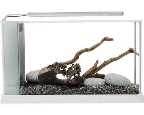 Aquarium Fluval Spec 5 Nano 21,1 l avec éclairage LED, filtre, blanc