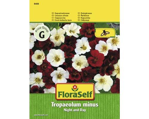 Capucine Night and Day ''Tropaeolum minus'' semences de fleurs FloraSelf®