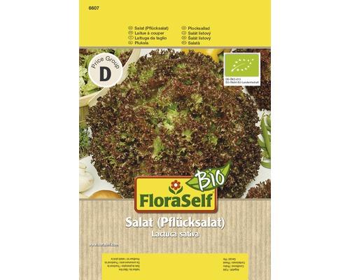 Salade à couper bio rouge semences de salade FloraSelf®