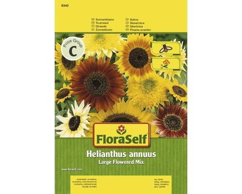 Tournesol aux fleurs géantes ''Helianthus annuus'' semences de fleurs FloraSelf®