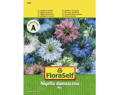Nigelle de Damas ''Nidella damascena'' semences de fleurs FloraSelf®