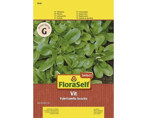 Mâche ''Vit'' FloraSelf Select semence de salade