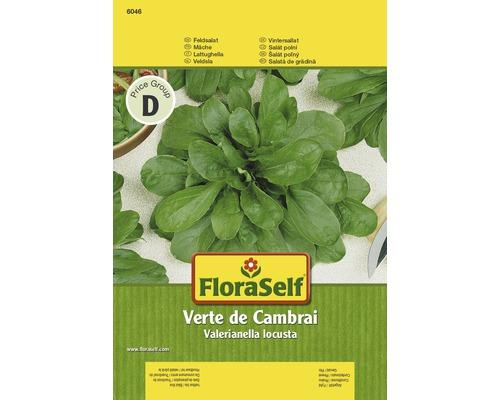 Mâche verte de Cambrai semences de salade FloraSelf®, 3g
