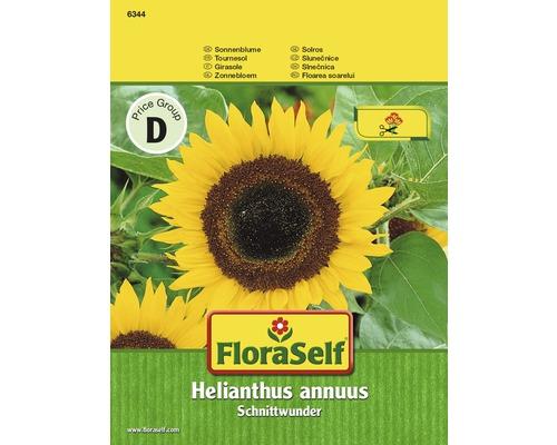 Tournesol Schnittwunder ''Helianthus annuus'' semences de fleurs FloraSelf®