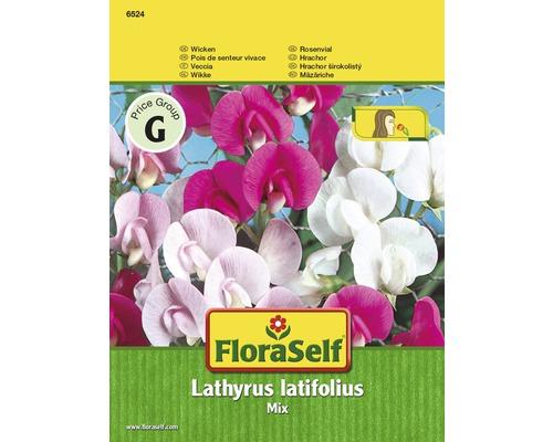 Pois vivace, mélange ''Lathyrus latifolius'' semences de fleurs FloraSelf®