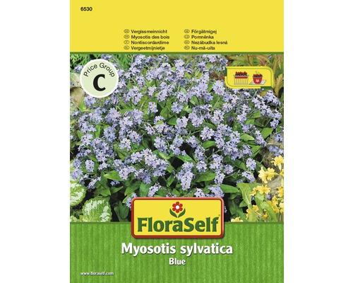 Myosotis ''Myosotis sylvatica'' semences de fleurs FloraSelf®