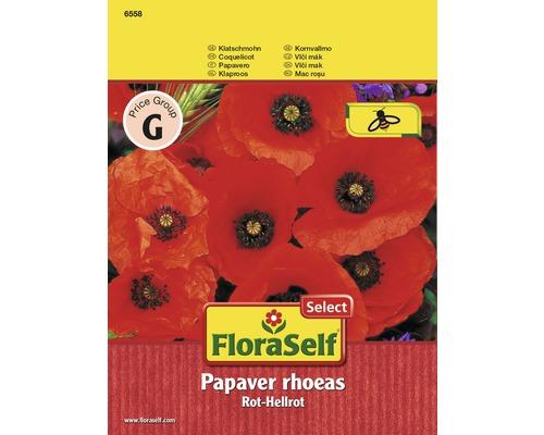Coquelicot rouge - rouge clair ''Papaver rhoeas'' semences de fleurs FloraSelf®