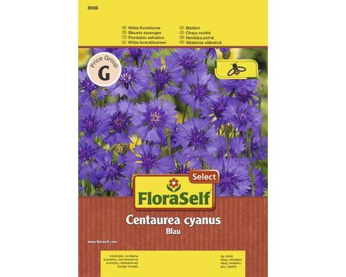 Bleuet sauvage Blau ''Centaurea cyanus'' semences de fleurs FloraSelf®