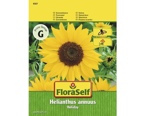 Tournesol Holiday ''Helianthus annuus'' semences de fleurs FloraSelf®