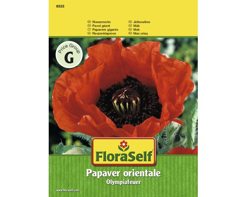 Pavot géant Olympiafeuer ''Papaver'' semences de fleurs FloraSelf®