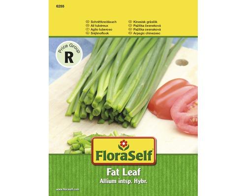 Graines de ciboulette FloraSelf®