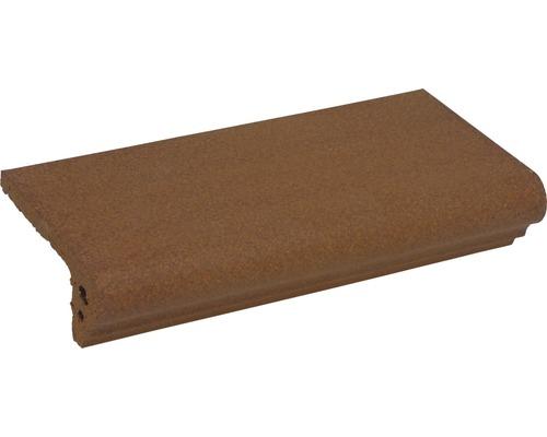 Marche d''escalier brun 11,5x24cm Non vitrifié