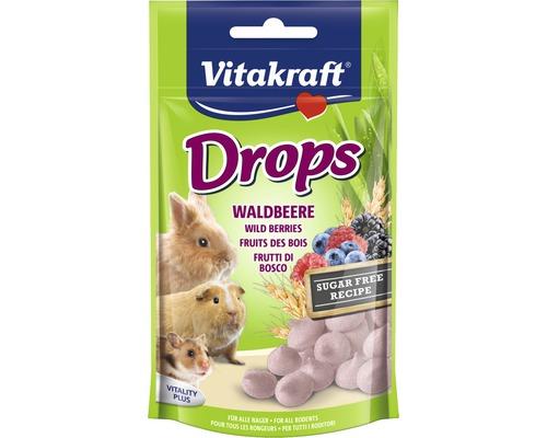 Snack pour rongeurs Vitakraft pastilles aux baies des bois pour lapin nain, 75 kg