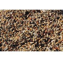 Wildvogelfutter mit Früchten 1 kg-thumb-1