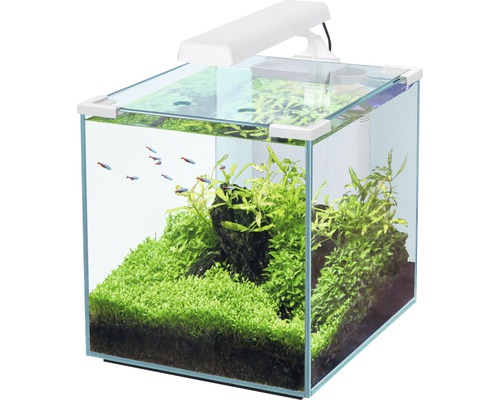Aquarium Nano Cubic 30, blanc