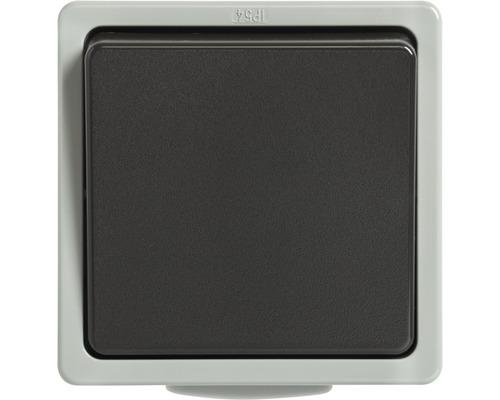 Interrupteur/inverseur IP54 pour pièce humide pose en saillie gris clair/gris foncé Standard IP 54