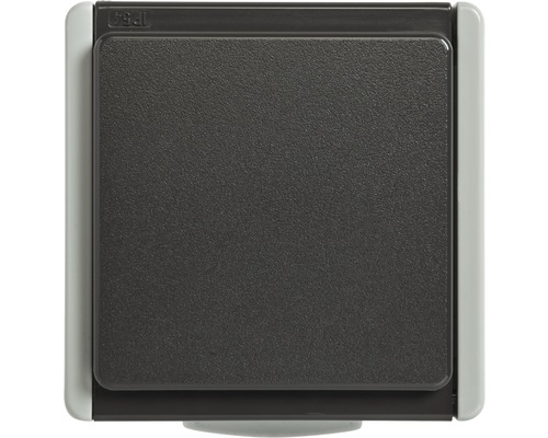 Prise de courant IP54 pour pièce humide pose en saillie gris clair, gris foncé Standard IP 54