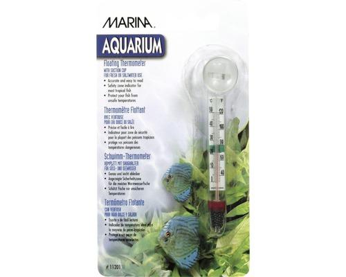 Thermomètre flottant pour aquarium Hagen